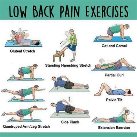 Lower Back While Detoxing by 65 Best Images About Sciatic Nerve Back On