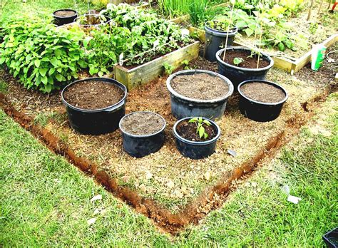 small kitchen garden ideas small vegetable garden design for small house guide