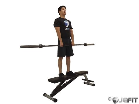 deadlift bench barbell stiff leg deadlift on bench exercise database jefit best android and