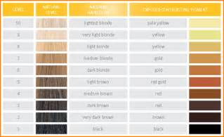 10 hair level chart bibliography format