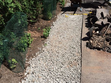 drainage issues in backyard westfield yard drainage driveway drainage and landscaping