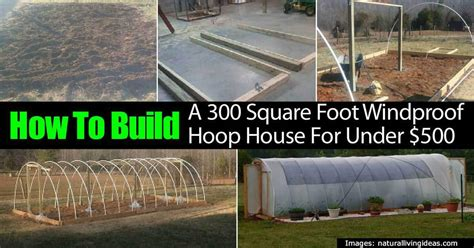 how much to build a 500 sq ft house building a 300 square foot hoop greenhouse for under 500