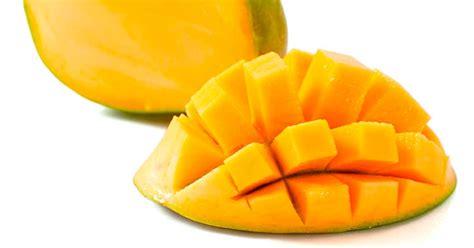 bahan untuk membuat manisan mangga mau bikin sorbet yuk intip buah apa saja yang cocok hock