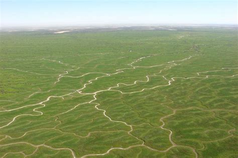 what are flood plains the flood plains of goyder s lagoon north of lake eyre in