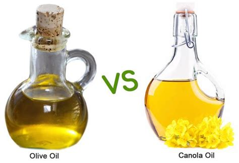 olive oil for hair wiki canola oil vs olive oil which is healthier for you