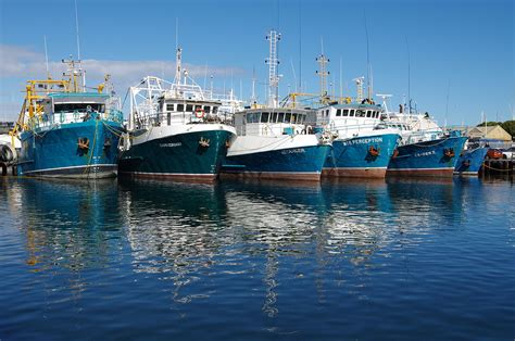 fishing boat harbour the top 10 things to do in fremantle perth