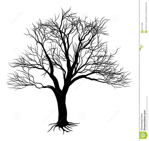 tree silhouette google search tree pinterest tree