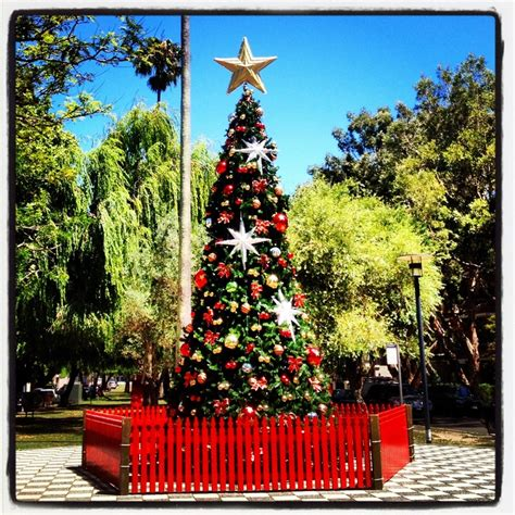 147 best images about christmas in australia on pinterest