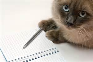 Cat Essay Writer by Cat Writers Association Cat Writing Events