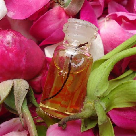 Minyak Bulu Perindu Asli minyak bulu perindu barang mistik