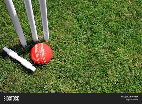 ppt templates for cricket free download stumps bail ball image photo bigstock