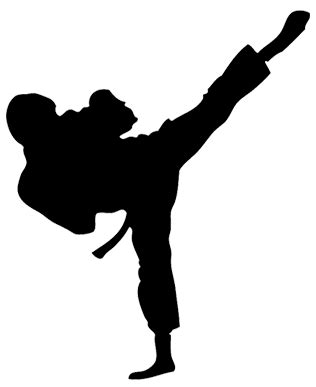 black belts only the invisible but lethal power of karate books roundhouse kick png
