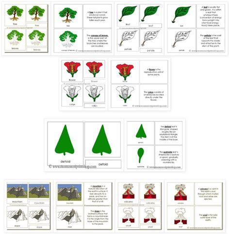 montessori printable shop printable montessori nomenclature cards and books by