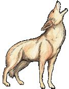 coyote clipart coyote clip pictures to pin on pinsdaddy