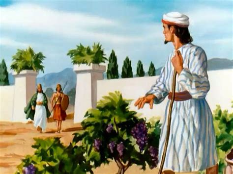 excavation  jezreel points  biblical naboths vineyard