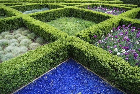 41 Incredible Garden Hedge Ideas For Your Yard Photos Hedging Ideas For Gardens