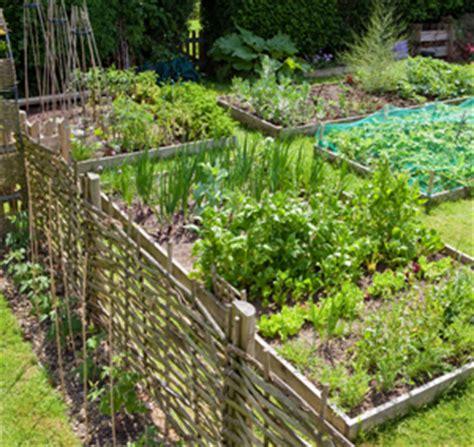 Garden Harvest Supply by How Much Sunlight Do Growing Vegetables Need Garden