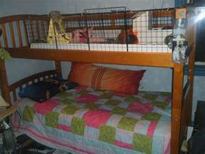 Rabbit Hutch With Run Underneath What Do You Keep Your C Amp C Cage On The Guinea Pig Forum