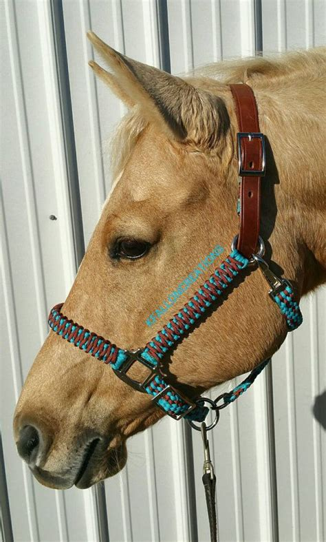 custom leather halters for horses top 25 best halters ideas on rope halter western tack and tack