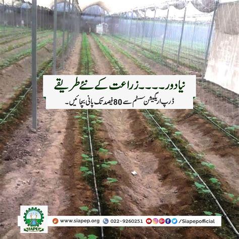 save upto  water  drip irrigation system