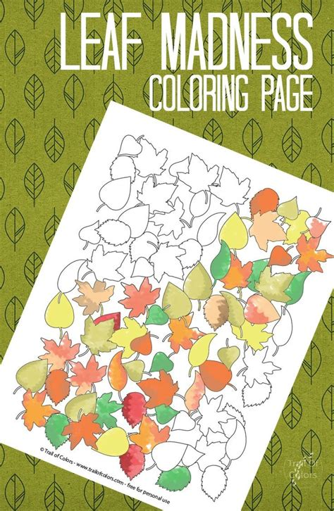 leaf collage coloring page 1000 images about automne on pinterest animaux leaves and