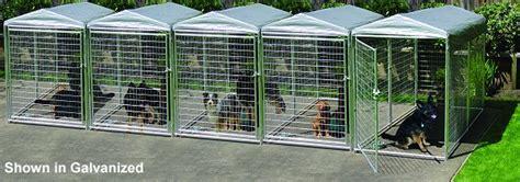 backyard kennels professional outdoor backyard kennels