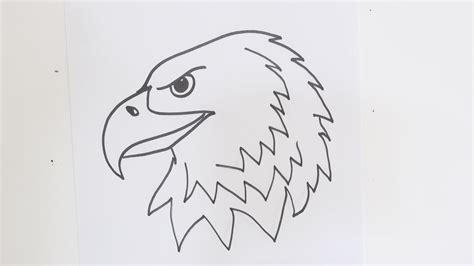 How To Draw A Bald Eagle For Beginners how to draw an eagle step by step easy tutorial