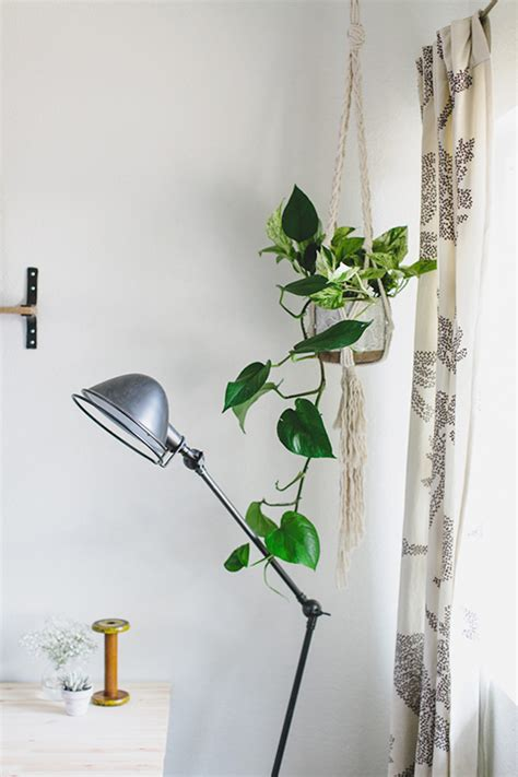 House Plant Hangers - a san diego home of handmade touches design sponge