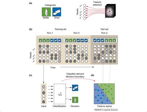 multi voxel pattern analysis neuroimaging beyond mind reading multi voxel pattern analysis of fmri