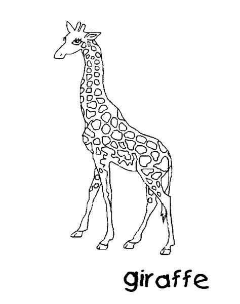 christmas giraffe coloring pages giraffe free coloring pages for kids printable colouring
