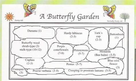 Hummingbird House Plans by Butterfly Garden Plan For The Home Pinterest