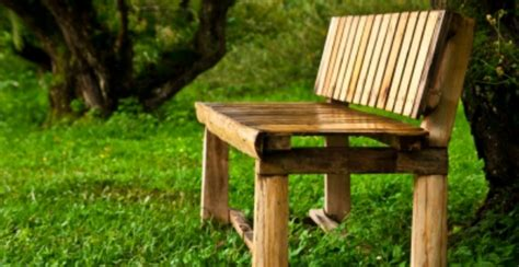 buy garden bench uk buy a wooden garden bench with storage in the uk