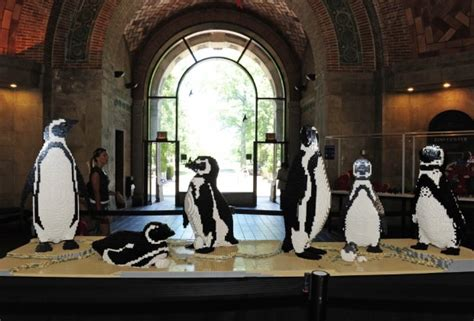 Penguins Passport Giveaway - family giveaway the bronx zoo s great summer zoofari a