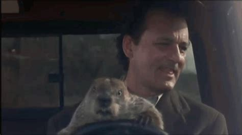 groundhog day s big show big ten football what s the b1g deal indiana celebrates