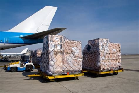 cambodia reaches digit high in air cargo volume