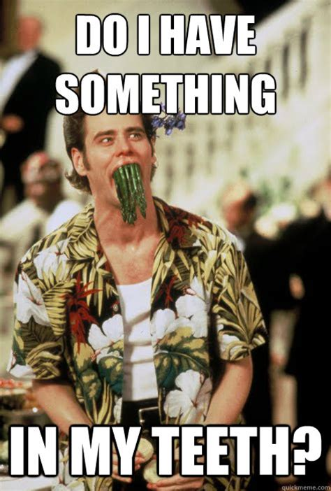 Ace Ventura Meme - ace ventura meme www imgkid com the image kid has it