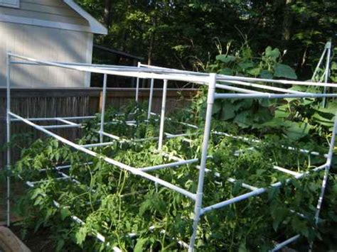 build tomato cage 18 diy tomato cages for your garden