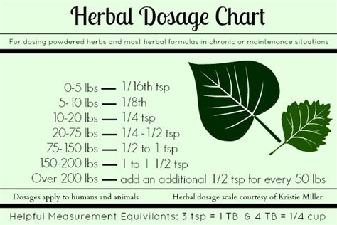 herb care chart homemade dyi medicinal on pinterest natural pain relief