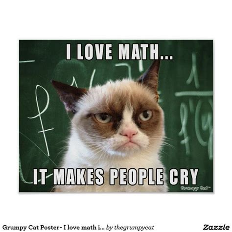 Grumpy Cat Meme Love - 17 best images about all about math on pinterest cut and