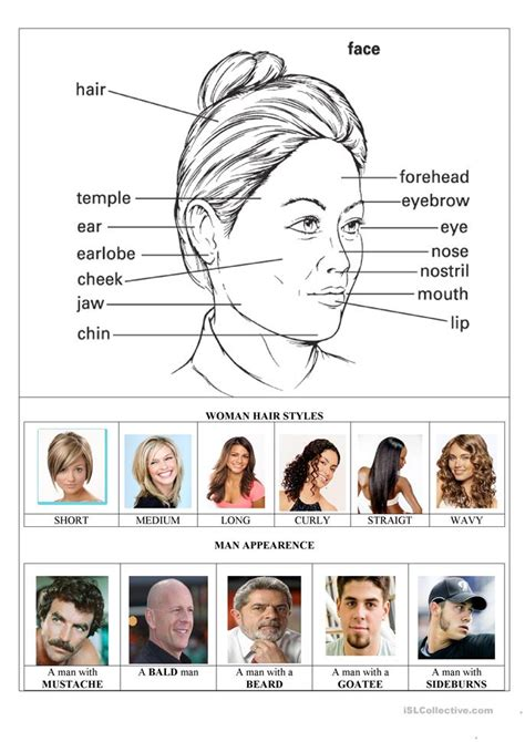 hair style esl the face parts and woman hairstyles worksheet free esl