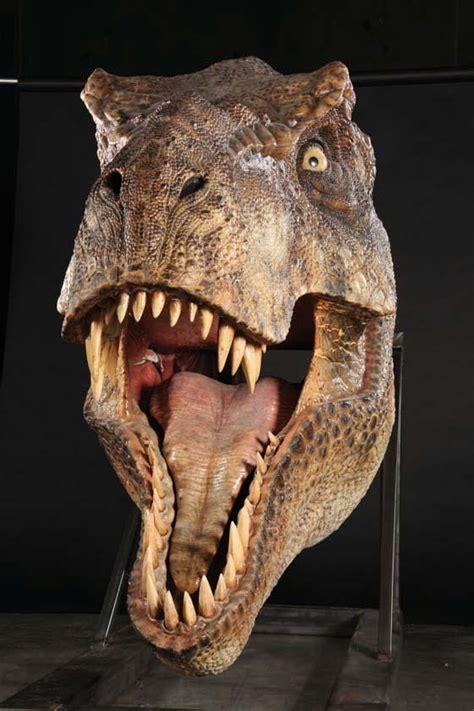 film hea dinosaurus t rex head google search birthdays pinterest