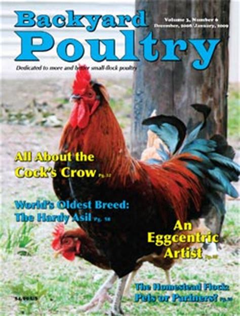Backyard Chicken Magazine Living Homegrown