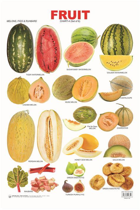 6 fruits in 17 fruit chart 04 jpg 1999 215 2999 education