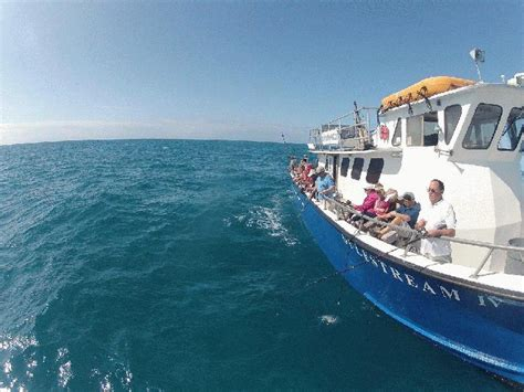find key west fishing party boats here at fla keys - Party Boat Fishing Fl Keys