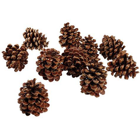 decorar con hojas secas de otoño con pias secas para nios un ratn con hojas secas de los