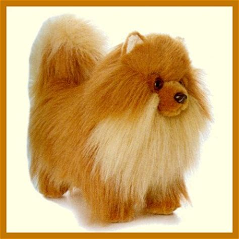 pomeranian stuffed animal pamy pomeranian stuffed animal