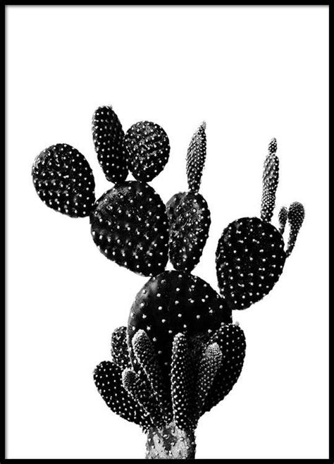 Hall Room Design Black Cactus One Poster