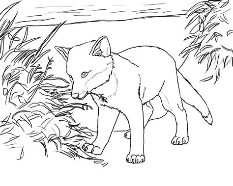 coloring page of a fox face free printable fox coloring pages for kids