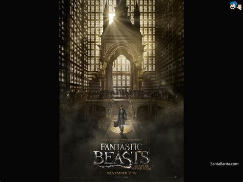 where to find wallpaper free fantastic beasts and where to find them hd
