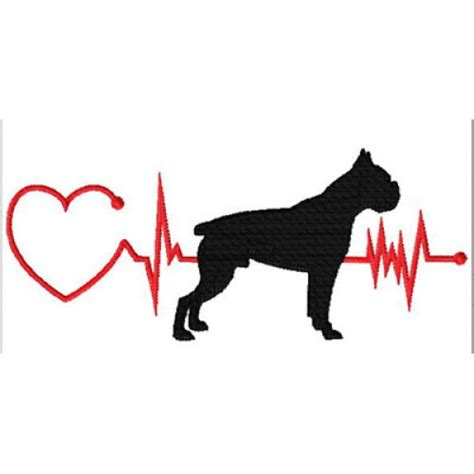 puppy heartbeat heartbeat boxer